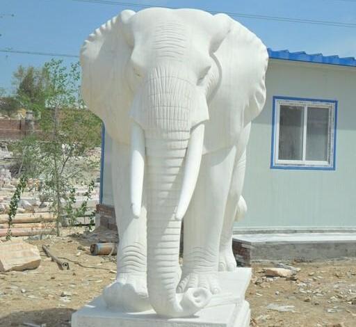 石雕大象_动物石雕_曲阳石雕
